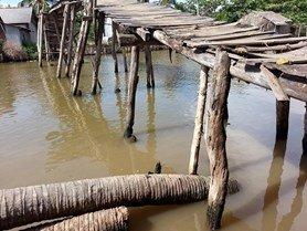 Thực trạng cây cầu trước khi được xây dựng