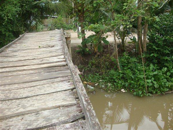 Chiếc cầu cây bắt qua sông đã lâu